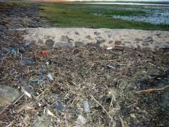 Um im Bild zu bleiben: Wenn die Menschen Treibgut sind, wofür steht dann der ganze Müll, der hier ständig angespült wird?