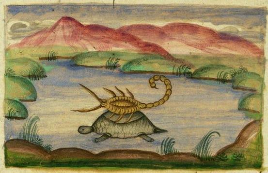 Illustration von Mīrzā Raḥīm (1847) der Fabel vom Skorpion und der Schildkröte aus den Anwar-I-Suhaili.